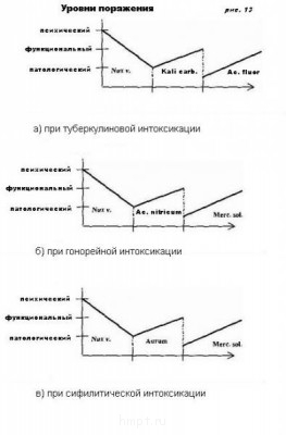 Стадии патологического процесса. Ч-5 МИАЗМЫ - Без рис. 13 имени.jpg