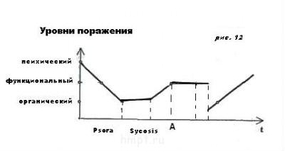 Стадии патологического процесса ПП. Ч-4 - attach рис. 12 ment51.jpg