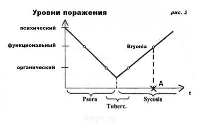 Разбор случая Витулкаса Фосфор  - c рис. 2 a.jpg