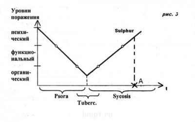 Разбор случая Витулкаса Фосфор  - d рис. 3 1.jpg