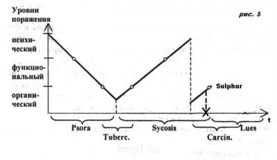 Разбор случая Витулкаса Фосфор  - 8 рис. 5 ac.jpg